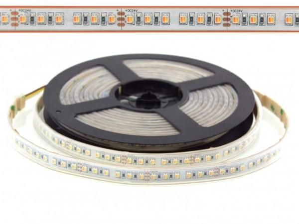 LED Flex Stripe 5m CCT Weissmischung 2500K-6000K 120LED/m 2-in-1 SMD CRI>90 24V IP67
