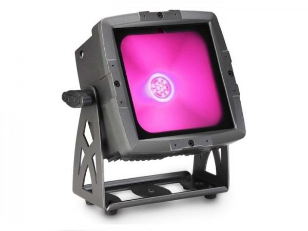 FLAT PRO FLOOD LED Scheinwerfer 60W COB RGB TriLED IP65